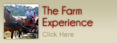 The Farm Experience